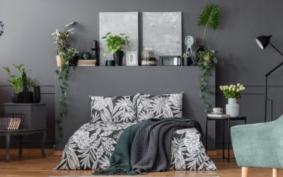 Will Plants Help You Sleep?